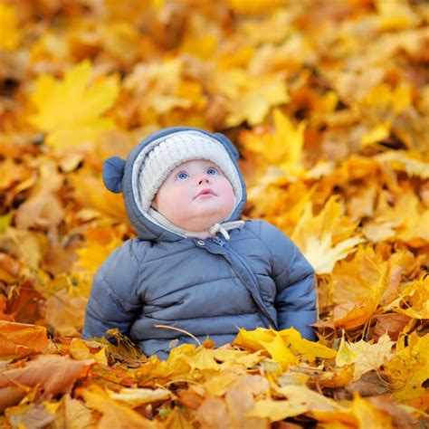 Autumn Boy 14 by 14 Autumn Baby Names You Ll Totally Fall For