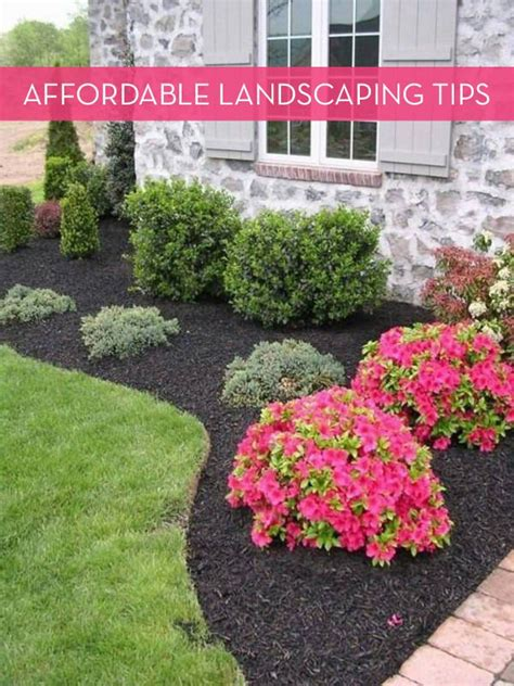 landscaping tips 25 best landscaping ideas on pinterest front