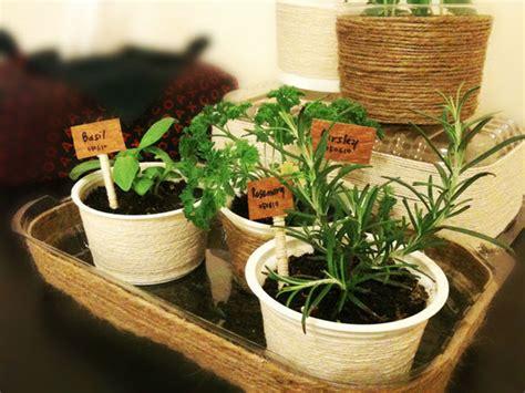 Mini Herb Garden | mini indoor herb garden