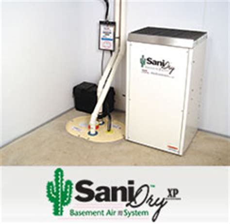 basement dehumidifiers eliminate dness musty odors