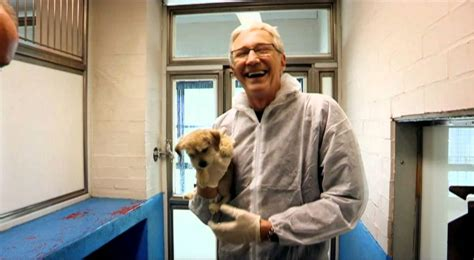 paul o grady s country books paul o grady for the of dogs