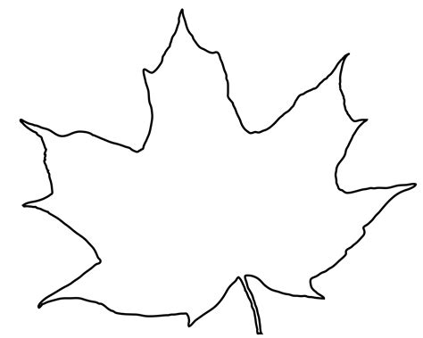 Sycamore Leaf Outline by Leaf Outline Fall Leaf Clipart Outline Free Images Clipartpost