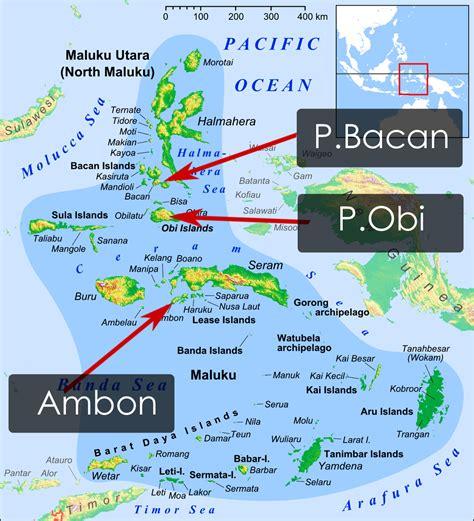 Bacan Ambon Halmahera kenalilah di sinilah letak pulau bacan jauh dari ambon