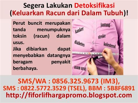 Agen Fiforlif Tangerang jual fiforlif tangerang 0856 325 9673 im3 agen