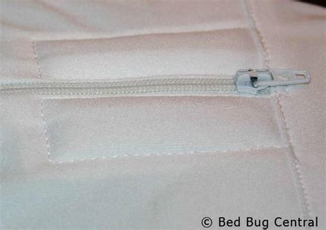 bed bug central bed bugs 101 mattress and box spring encasements