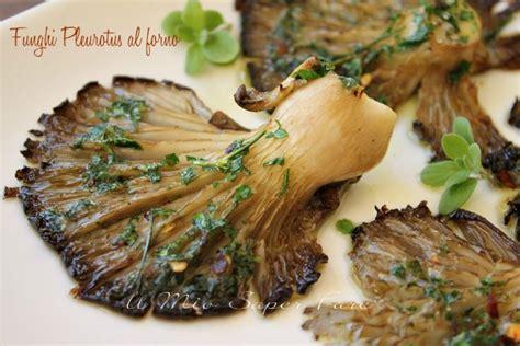 come cucinare funghi pleurotus funghi pleurotus al forno ricetta facile leggera e gustosa