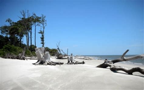 tom jackson bluffton sc places to see in the lowcountry tom c jackson