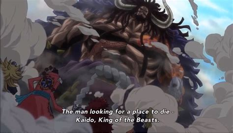 Kaido The Beast Jaket Anime One kaido appears introduction epic one 739 eng sub hd