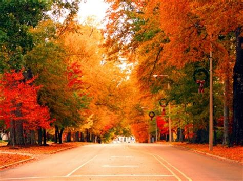 Autumn In Oxford 17 best images about oxford mississippi y all on