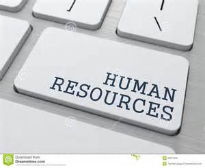 human resources business concept royalty free stock