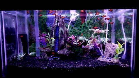 rahasia membuat aquascape lu led aquarium mini doovi