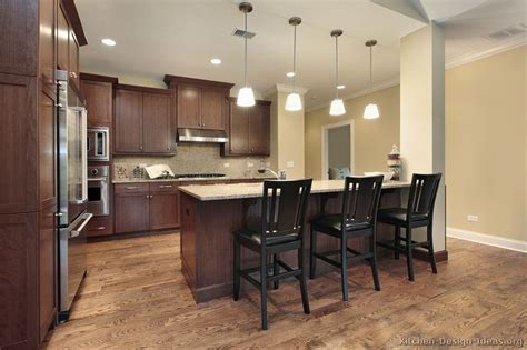 dark kitchen ideas pictures of kitchens traditional dark wood kitchens