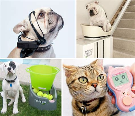 gadgets for pets pet tech 13 goofy gadgets for the dogs cats urbanist