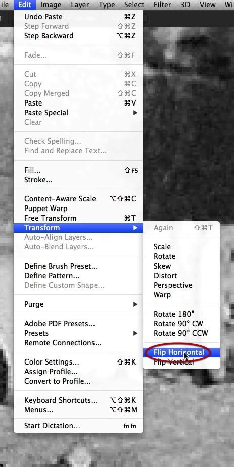 reset lasso tool how to restore a heavily damaged photo with photoshop