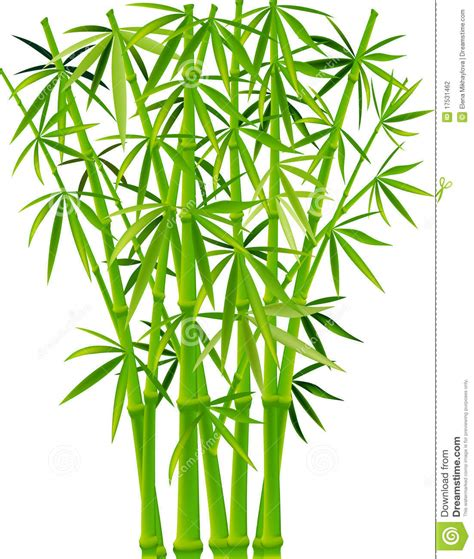 bamboo clip bamboo 20clipart clipart panda free clipart images