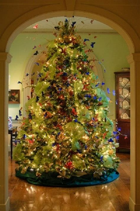 monarch butterfly butterflies and christmas on pinterest