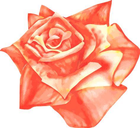 libro red rosa a graphic mawar airbrush vektor 183 gambar vektor gratis di pixabay