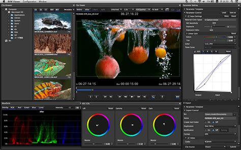 format video raw sony creative software raw viewer