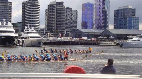 dragon boat racing docklands dragon boat paddling open day melbourne