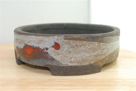 Handmade Bonsai Pots For Sale - the 25 best bonsai trees for sale ideas on