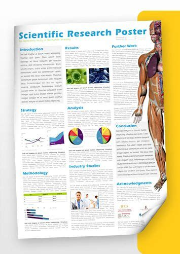 scientific poster layout design best 25 scientific poster design ideas on pinterest