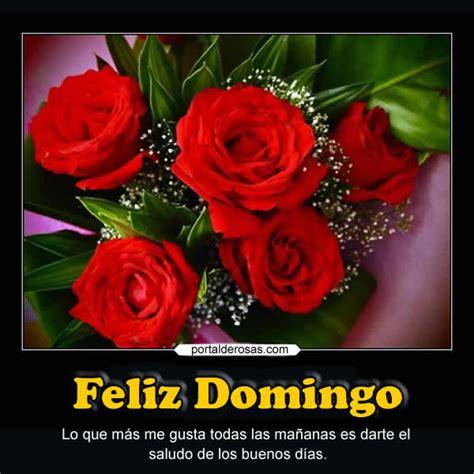imagenes de rosas feliz domingo imagenes de flores de domingo musica hoy musica romantica