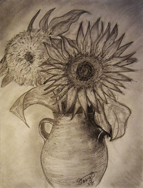 How To Draw Sunflowers In A Vase by Still Two Sunflowers In A Clay Vase Drawing By Jose A