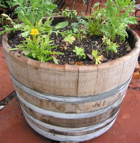 Half Wine Barrel Planter Gardenista Barrel Planter
