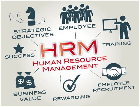 a beginners guide to resources beginners guide to strategic human resource management