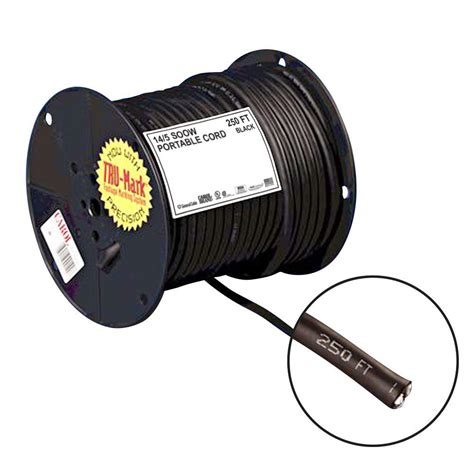 black l cord with switch connecticut electric 20 ft 20 amp manual transfer switch