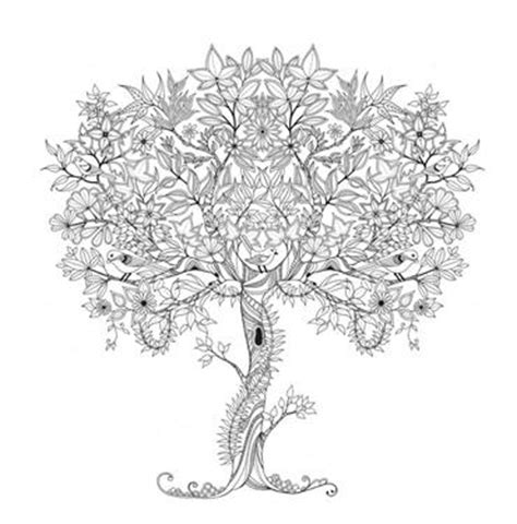secret garden coloring book johanna tree coloring page coloring club