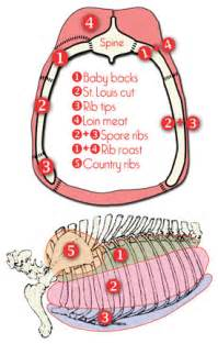 Country Style Pork Ribs Bone In - drew s clues pork spareribs