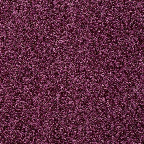 Fushia Rug Plum Carpet Carpet Ideas