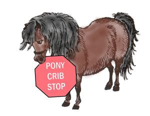 How To Stop Cribbing by Pony Crib Stop And Hound Supply