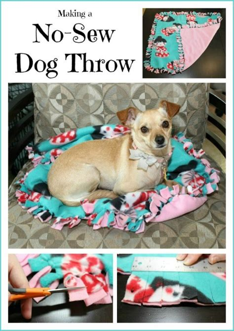 how to make a puppy throw up how to make your throw up pets world