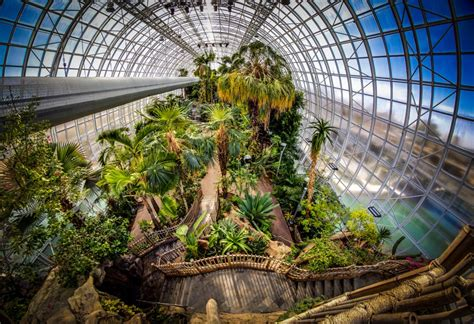 Botanical Gardens Oklahoma City Myriad Botanical Gardens Spotlight On The Bridge Tropical Conservatory Tanglewood