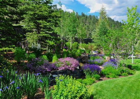 Mountain Landscaping Ideas Evergreen Mountain Retreat Traditional Landscape Other Metro By Designscapes Colorado Inc