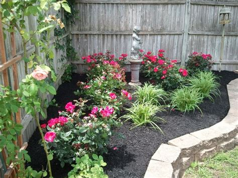 Landscaping Ideas Knockout Roses 25 Best Ideas About Knockout Roses On Pool