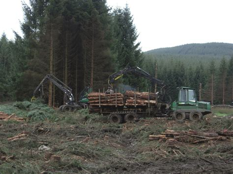 Railway Sleepers For Sale Scotland by More Trees Fencing And Landscaping News