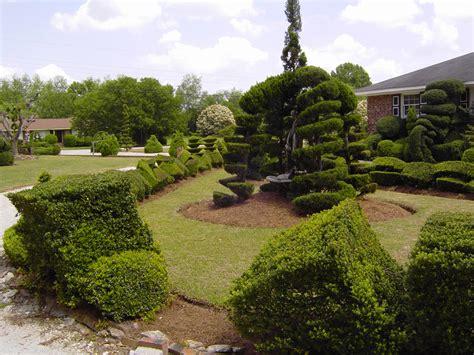 pearl fryar s topiary garden