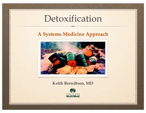 Quicksilver Mold Detox by Detoxification