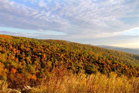 Poplar Forest Floor Plan shenandoah s fall color shenandoah national park u s