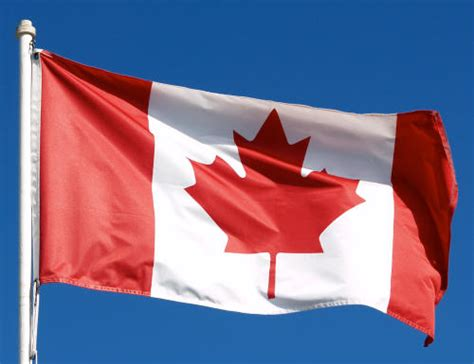 Search For In Canada Local Search Rank Checker Live In Canada