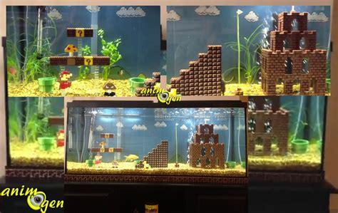 idee decoration aquarium eau douce