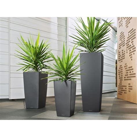 lechuza self watering cubico planter newpro containers