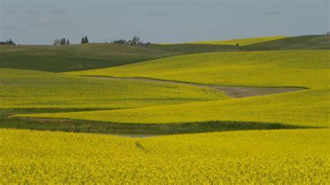 Landscape Photos Dakota Dakota Landscapes Minot Usa Travellerspoint