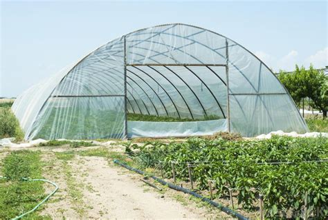 green house how do i choose the best greenhouse cover with pictures
