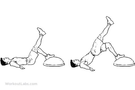 bosu ball single leg bridge hip thrust extension