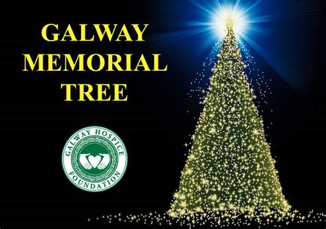 tree recycling galway 28 images tree recycling galway