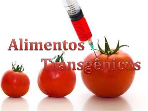 alimentos transgenicos alimentos transg 234 nicos